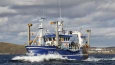 fiskebåd til salg