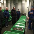 Kollerup fiskeauktion
