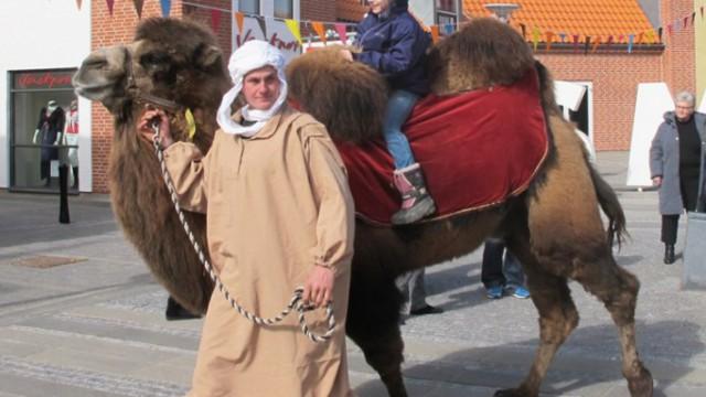 kameler-pressefoto1